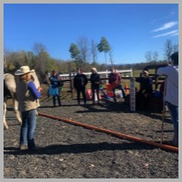 Corporate Team Building Programs at Stable Connections